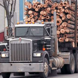 Environmental group says LePage 'green' order promotes destructive logging