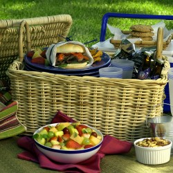 Summer Picnic Survival Guide