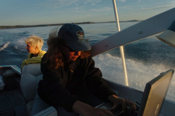 Research scientist Amy Knowlton records sightings of marine life in the Bay of Fundy near Grand Manan at dawn Thursday, Aug. 20, 2009.