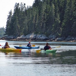 Kayak trip on the Pemaquid River planned