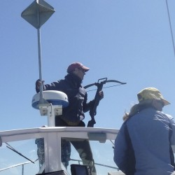 Whale experts share studies at West Quoddy Head