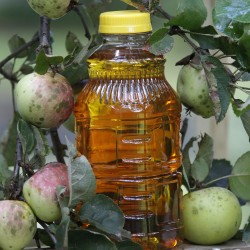Arsenic in apple juice? Calories pose a greater threat