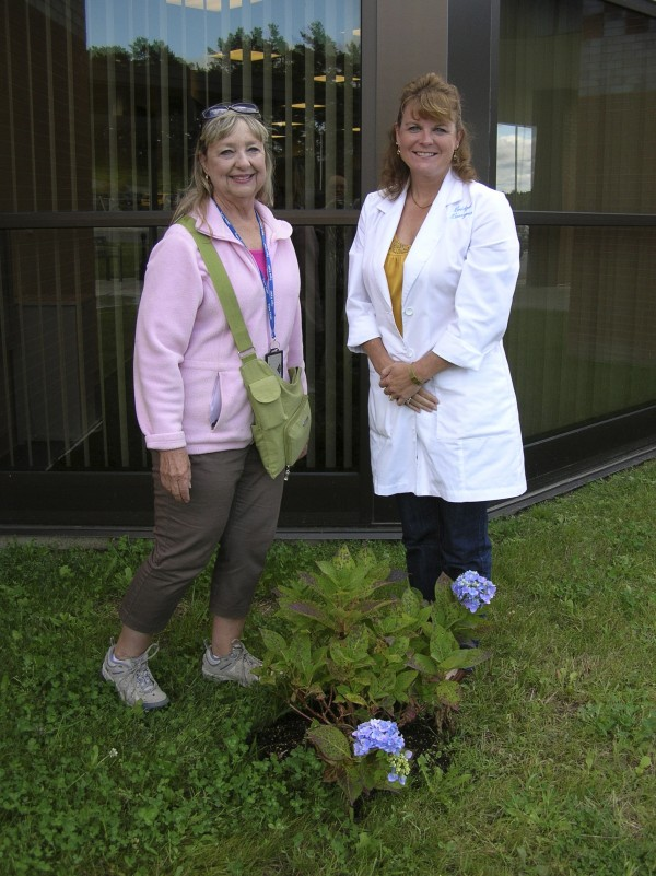 Sonia Mallar (left), chaplain of Frances Dighton Williams Chapter, Daughters of the American Revolution, in Bangor; and Lt. Col. Bridget Brozyna, commander of the Veterans Administration Bangor Outpatient Clinic off State Street, admire a hydrangea the chapter donated as part of the Maine DAR State Regent's Project of Conservation. Mallar, who is a trained VA Volunteer Services representative for Maine DAR, volunteers regularly at the Bangor Veterans Clinic and planted four hydrangeas and two lilac bushes in front of the new facility. The clinic will hold an open house at 11 a.m. Monday, Sept. 26. Participants will include the Air Force Band Liberty, congressional representatives and First Lady Ann LePage.