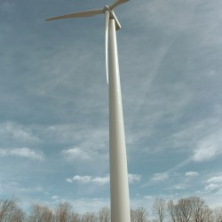 Group pushes to halt wind projects