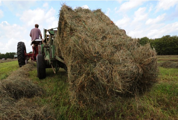 A bale of hay falls off the back of Jeff Kelman's 1959 John Deere 14T baler as he pulls it along his hay fields in Glenburn on Monday, Sept. 12, 2011.