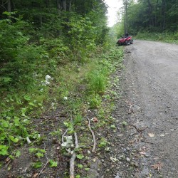 Four injured in weekend ATV crashes in Maine