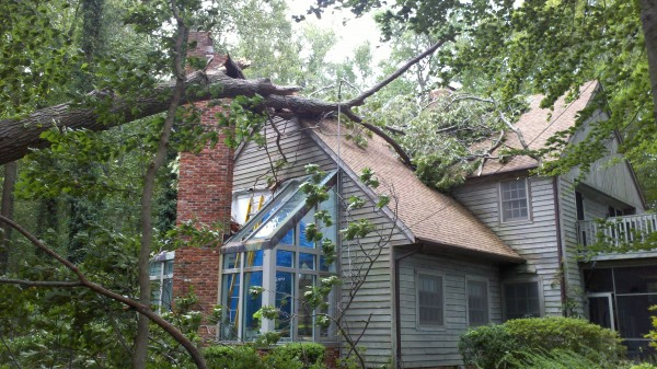 This Sunday, Aug. 28, 2011 file photo provided by the Queen Anne's County Office of the Sheriff shows a tree that has fallen on a house in Queen Anne's County, Md., due to Hurricane Irene, causing a chimney to collapse, killing one person. Forecast to be the biggest storm in decades to hit the Eastern Seaboard, Irene triggered evacuations, airport closures and the unprecedented shutdown of New York's mass transit system. But unlike major hurricanes that kill dozens of victims at a time, this storm claimed a victim here and a victim there on its swirl through 13 states as it spun toward Canada — at least 46 U.S. deaths in all.