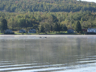 These two moose took about a 1/2 mile swim in Long Lake. This particular area of the lake is in Sinclair, an unorganized township in Aroostook County.