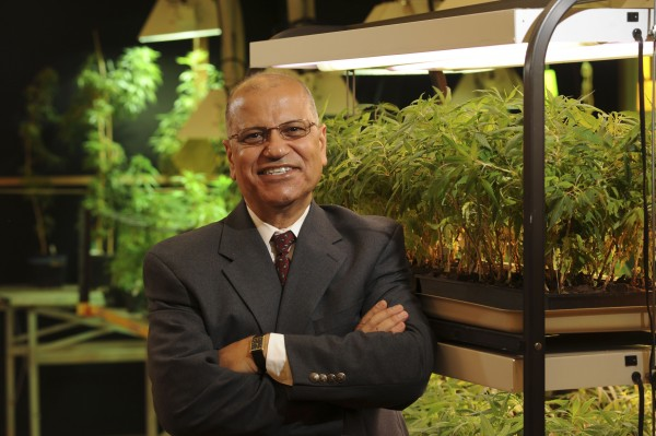 This Aug. 19, 2008 photograph released by the University of Mississippi Brand Photography Services shows Dr. Mahmoud ElSohly, who directs the federally sponsored medical marijuana operation in at the University of Mississippi in Oxford, Miss. For the past three decades, the federal government has been providing a handful of patients with some of the highest grade marijuana around. The program grew out of a 1976 court settlement that created the country''s first legal pot smoker.