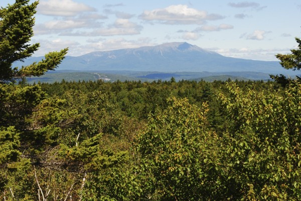 Mount Katahdin rises above the forest in the view from Turtle Ridge located in the Nahmakanta Public Lands