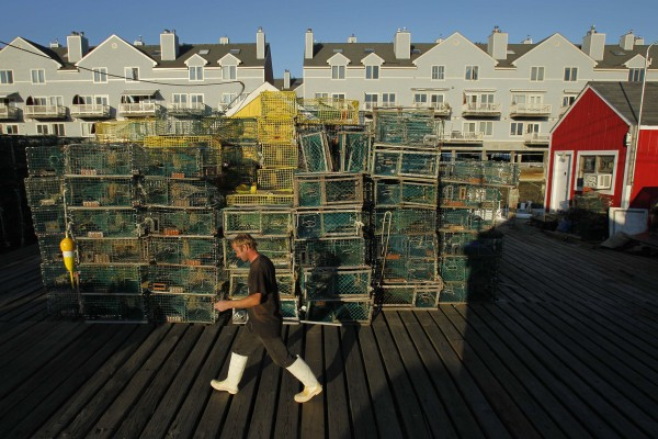 Sternman Michael Day heads for home at the end of a long day, passing stacks of lobster traps on Widgery Wharf in Portland. Condominiums overlook the 250-year-old wharf.
