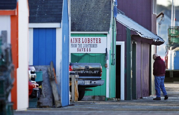 A lobster dealer arrives on Widgery Wharf in Portland. According to one story, complaints of the wharf being an eye-sore led to the repainting of the fishing shacks to match the bright colors of the lobstermen's buoys.