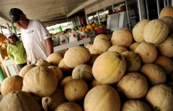 Bill Sackett stands next to cantaloupes that are not subject to the recent recall at his Rocky Ford, Colo. farm market. Jensen Farms in Holly, Colo., about a hundred miles from Rocky Ford, has issued a recall of cantaloupe following a Listeria outbreak that has killed at least two people, sickened 22 and spread to several states.