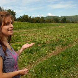 Options for local food, products growing in Fort Kent
