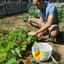 Maine man renews call for Victory Gardens