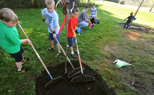 Students from the Veazie Community School rake mulch around one of the trees that were planted in the school yard Friday. The town received a gift of 44 trees from the Maine Forestry Program and employees planted them on town properties among the school. Pictured are (from left) Noah Parker, 6, Dominic Needham and his twin brother, Zach Needham, both 8.