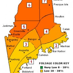 "Maine fall foliage colors expected to be ""bright and beautiful"""