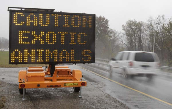 A sign warning motorists that exotic animals are on the loose rests on I-70 Wednesday, Oct. 19, 2011, near Zanesville, Ohio. Police with assault rifles stalked the animals after authorities said their owner apparently freed dozens of wild animals and then killed himself.