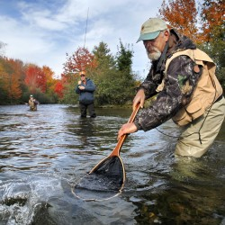 Guide John Arcaro prepares to net a salmon for a client from Colorado in the Hatchery Pool. Grand Lake Stream has more registered guides per capita than anywhere else in Maine. Arcaro owns Canalside Cabins.