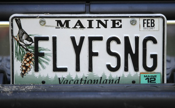 An angler's vanity license plate attests to his passion for fly fishing.