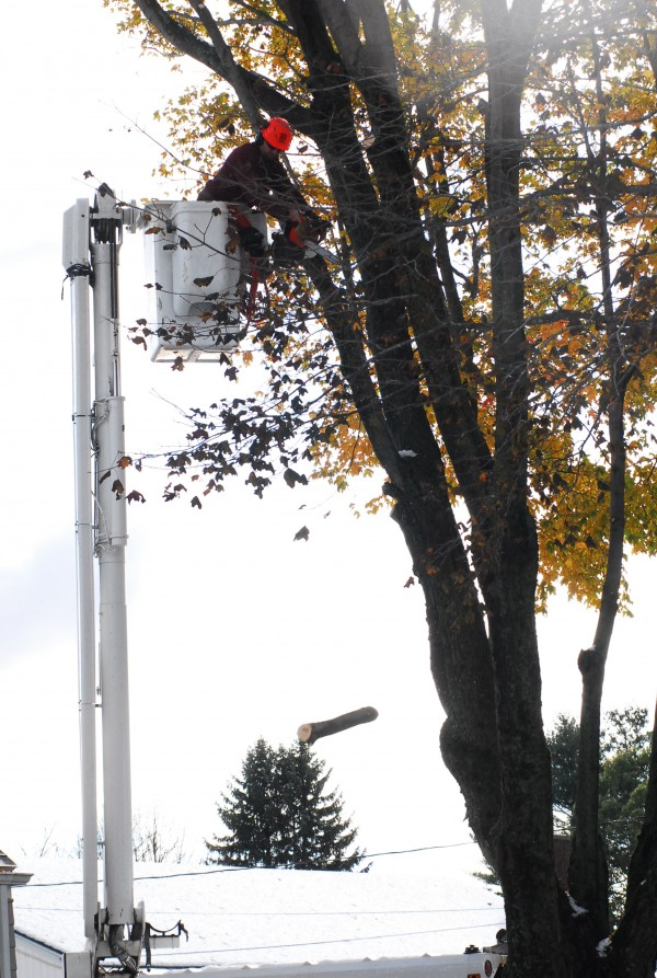 Tom Wight of T.W. Enterprises Inc. is up in a bucket lift, cutting limbs damaged in the October storm on Winding Way in Portland on Oct. 30, 2011.