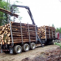 GOP takes heat for opposing bills dealing with Canadian loggers in Maine woods