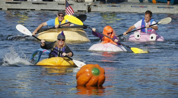 Participants paddle giant pumpkins during the Damariscotta Pumpkinfest and Regatta.