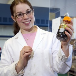 New UMaine technology center to turn wood chips and grass into fuel and plastics