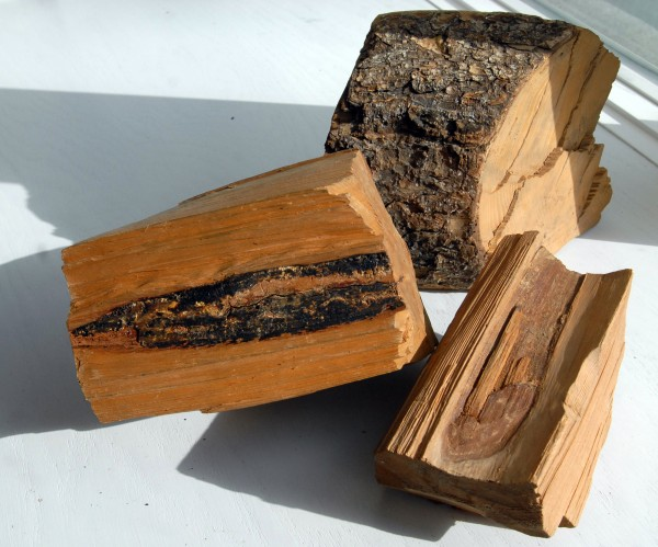 Three pieces of wood entered as evidence in a deposition filed in 1878 by noted surveyor Noah Barker to end a property dispute between T3R9 and T3R8.  Barker found the original line that was blazed in 1794 and cut a chunk out of several trees that showed the marks. The black mark in the piece on the left shows the wound of the original cut that blazed the line.