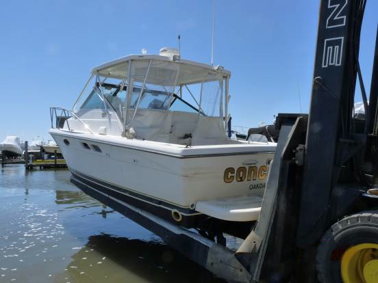 BoatUS says boaters made significant efforts to avoid Hurricane Irene damage by hauling their boats to dry land.
