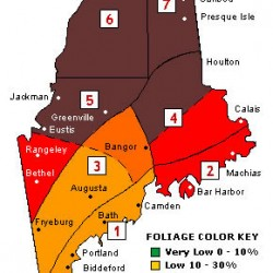 Peak colors reported in coastal, southern Maine
