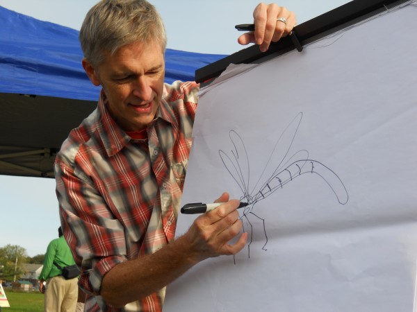 Illustrator Scott Nash draws a damselfly for kids during the opening of a new StoryWalk in Payson Park in Portland. Nash drew a damselfly as the main character in &quotThe Bugliest Bug,&quot which he illustrated and Carol Diggory Shields wrote. Pages from the book are posted on signs along the StoryWalk.