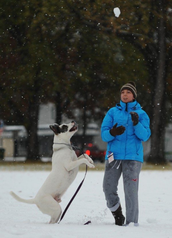 &quotHe loves the snow&quot said Jillian Braase, a student at Husson University, as she plays in the snow with her dog Bandit on Sunday, Oct. 30, 2011, at Broadway Park. With Braase was Derrick Paquette (not pictured) of New Hampsire.