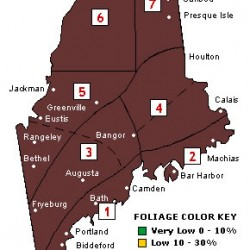 Northern half of Maine now has moderate-to-high foliage color