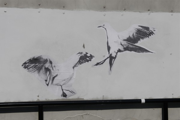 An example of the Pigeon's artwork, attached to Bangor buildings with wheat paste.