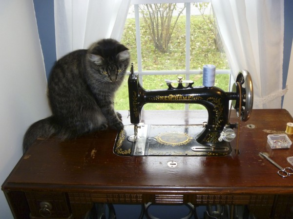 This antique sewing machine was new in 1887. It was purchased in the 1980s from a shop in Brewer.