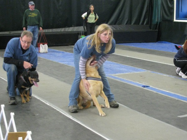 Kari Daniels of Moodus, Conn., held back her yellow labrador, Potter, who was raring to race Saturday at the flyball tournament. &quotThe dog goes crazy for it,&quot she said of the sport. &quotIt's a good way to get him exercise.&quot