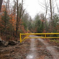 A gate erected by Roxanne Quimby blocking a road in Elliotsville Township has been removed after an investigation determined the road is not considered abandoned.