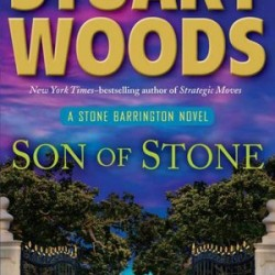 Woods furnishes new Stone mystery