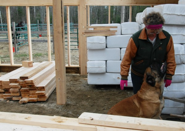 Debra McKay of K.D. Stable shares a moment with an English Mastiff named Diesel at her horse-rescue farm in Lee on Saturday, Nov. 12, 2011.