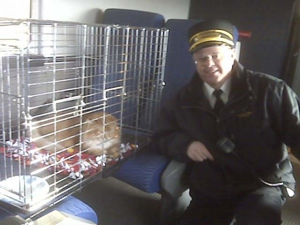 Togus the Cat rode the rails in relative comfort last year, under the watchful eye of Maine Eastern Railroad conductor, Ernie Vannah, during last year's inaugural Coats & Toys for Kids Day campaign special train. Togus will ride again on Dec. 3.