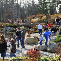 New garden at Coastal Maine Botanical Gardens