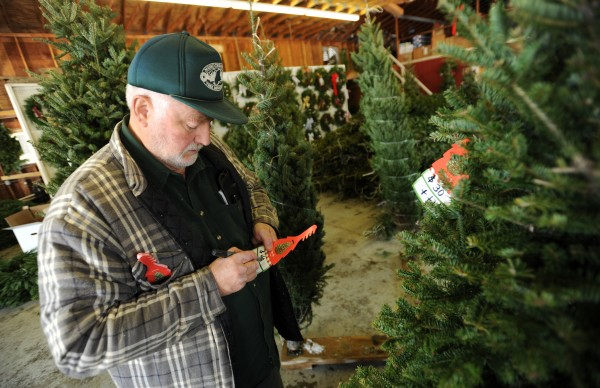 Jim Corliss, owner of Piper Mountain Christmas Trees in Newburgh, prices some of this trees in the family-owned store on Friday, Nov. 25, 2011. Corliss is in favor of a tax on his product that will be used to fund marketing for natural Christmas trees.