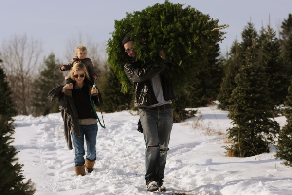 Sean Bennett, followed by his wife Becky, along with daughter Ava, hauls a Christmas tree out of the field at Piper Mountain Christmas Trees in Newburgh on Friday, Nov. 25, 2011. Both Bennetts say they would suport a tax on Christmas trees if it helped to promote the natural product.