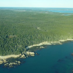 Saving Schoodic Peninsula