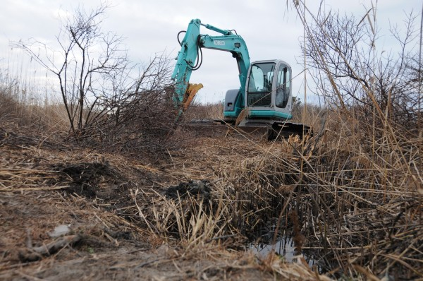 Crime Scene investigators use heavy equipment to search a marsh for the remains of Shannan Gilbert on Monday, Dec. 12, 2011 in Oak Beach, New York.