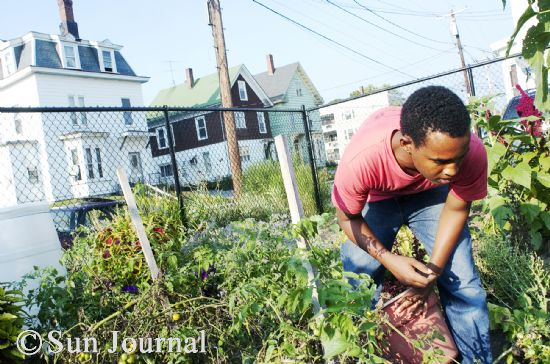 The Somali community has enthusiastically participated in a number of community programs and resources, from homework tutoring to citizenship classes to public gardening. Abdikadir Ismail, 16, an intern with Lots to Gardens, says he joined the program because he thought it would help him build leadership and public speaking skills.