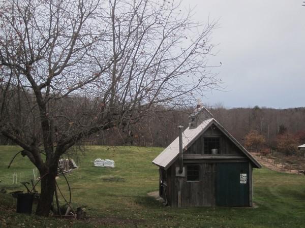 The maple sugaring shack at Nutkin Knoll farm.