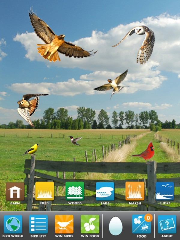 My Bird World app entertains and teaches kids.