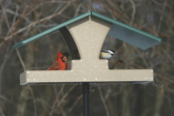 Birds Choice feeders are made from recycled materials.
